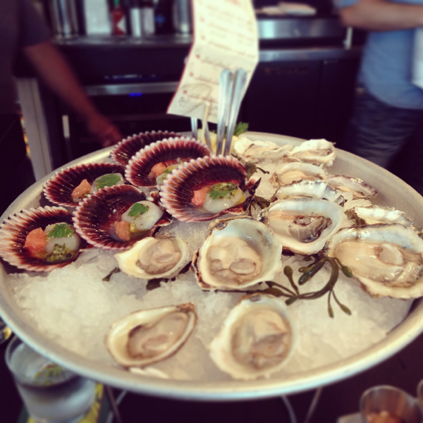 Scallops & Oysters!